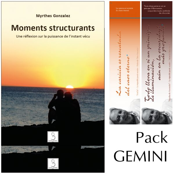 Illustration: Pack Gemini Moments Structurants
